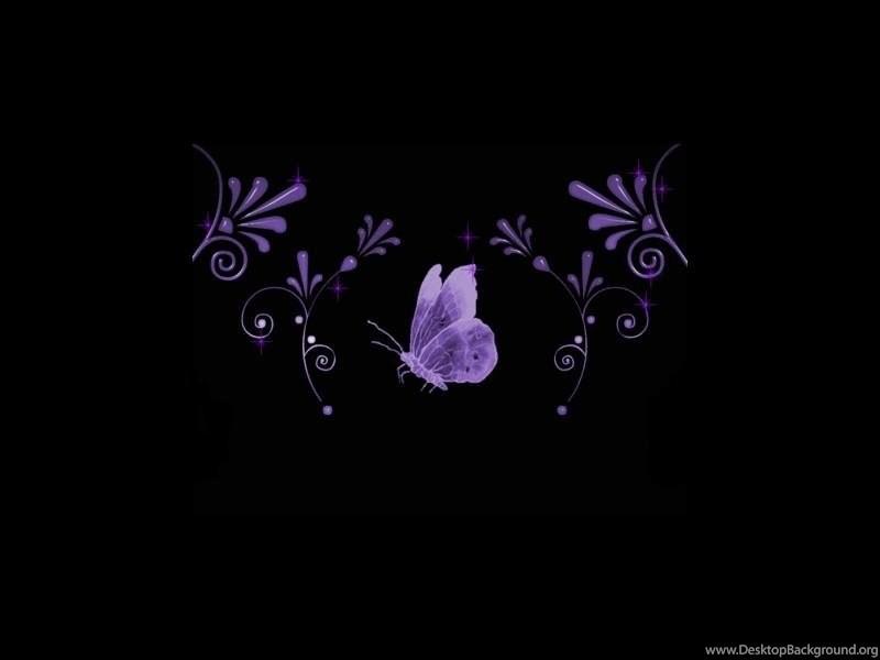 706281 wallpapers purple butterfly on black free