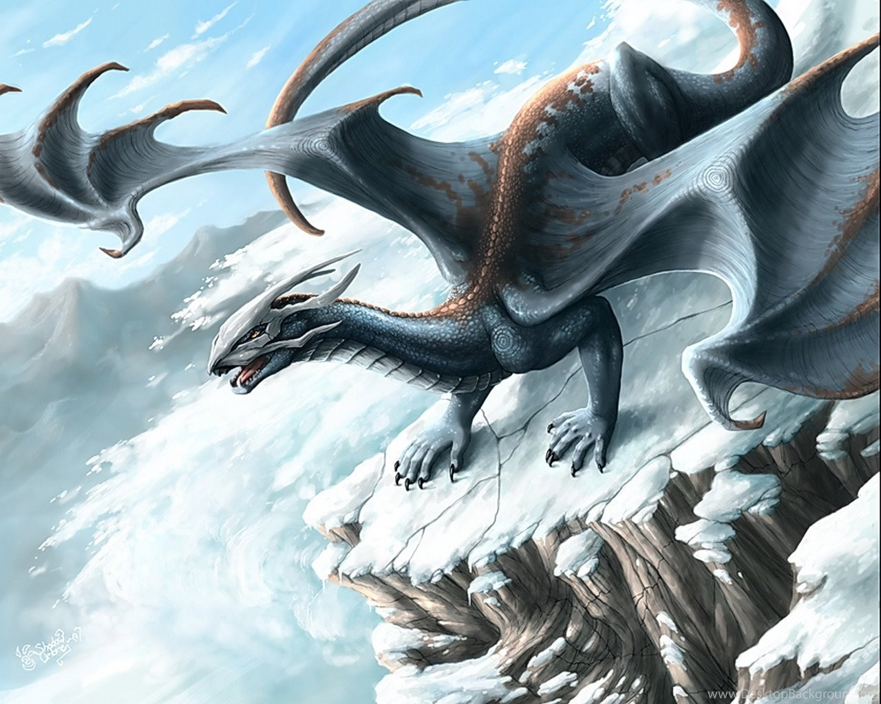 Snow Skull Dragon Wallpapers From Dragons Wallpapers Desktop Background