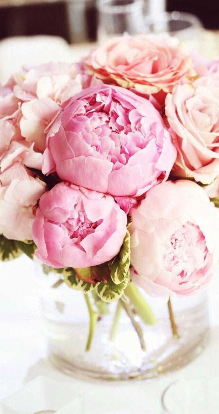Floral Iphone Wallpapers On Pinterest Desktop Background