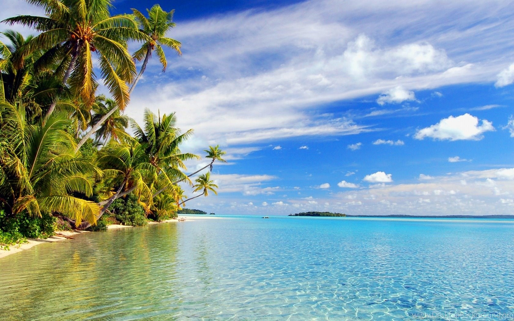you can download tropical paradise backgrounds awesome wallpapers