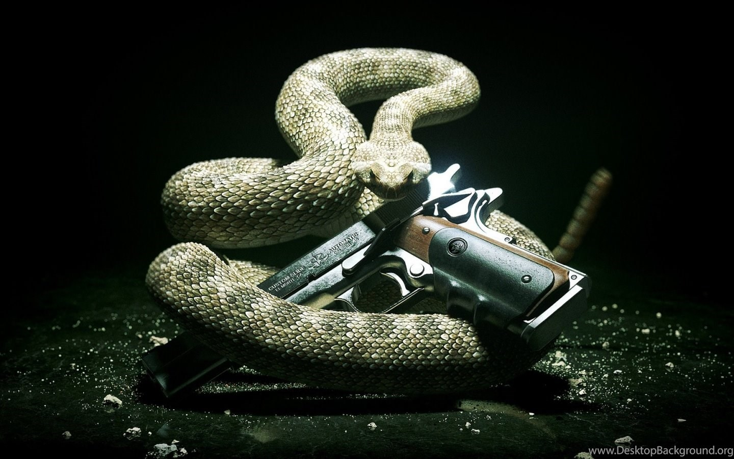 hitman snake and the gun desktop backgrounds hd 1920x1080 desktop