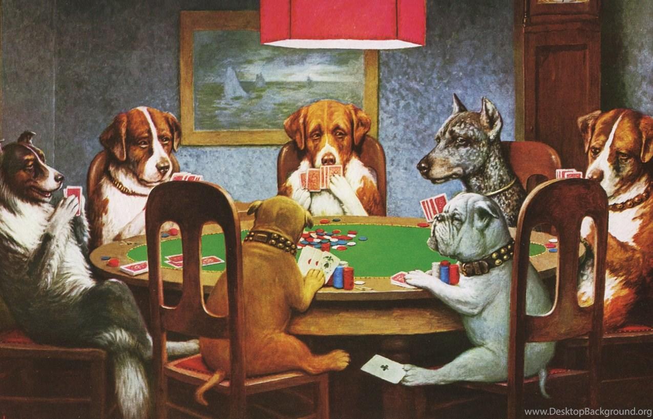 Hunde Beim Pokern