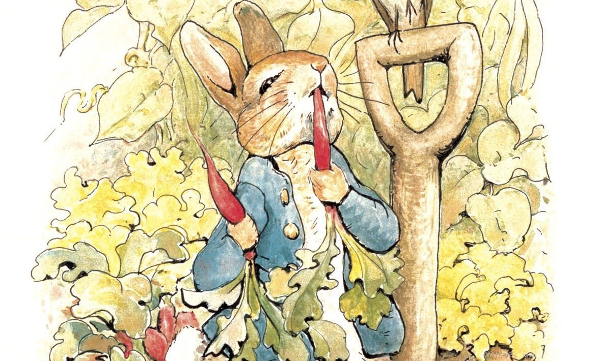 Beatrix Potter, Beloved Children\'s Author Desktop Background