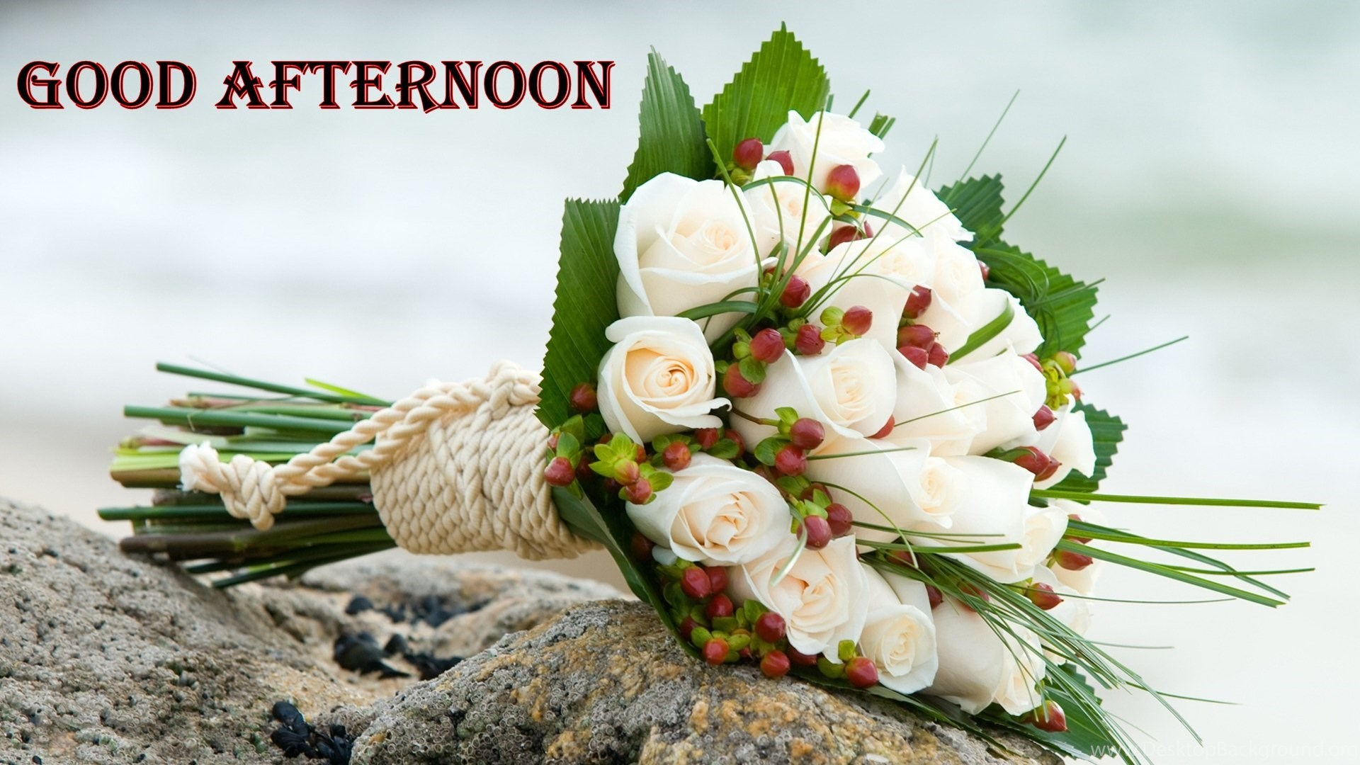 Good Afternoon White Roses Flower Bunch HD Wallpapers Desktop Background