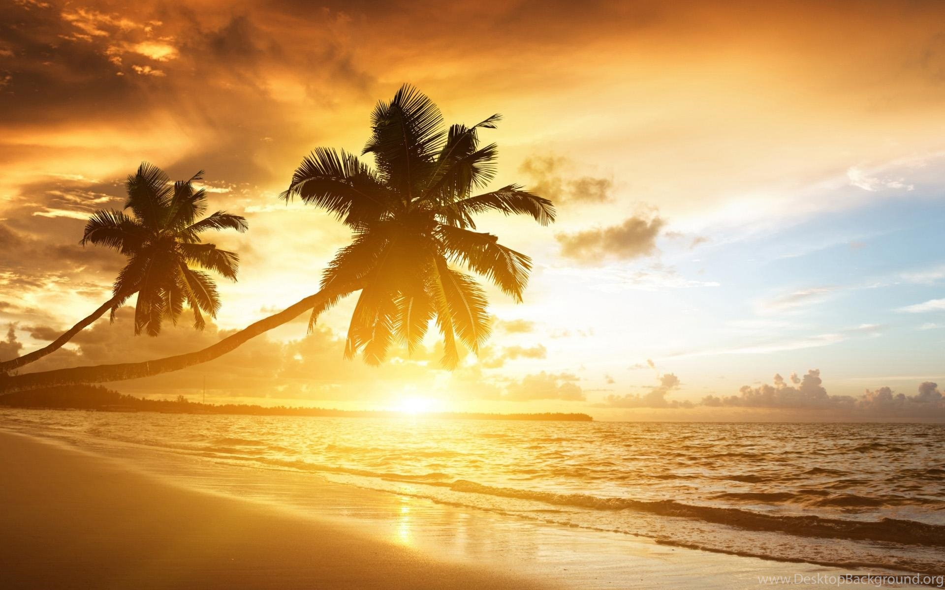 Beach Sunset Wallpapers Widescreen Hd Cool 7 Hd Wallpapers Desktop