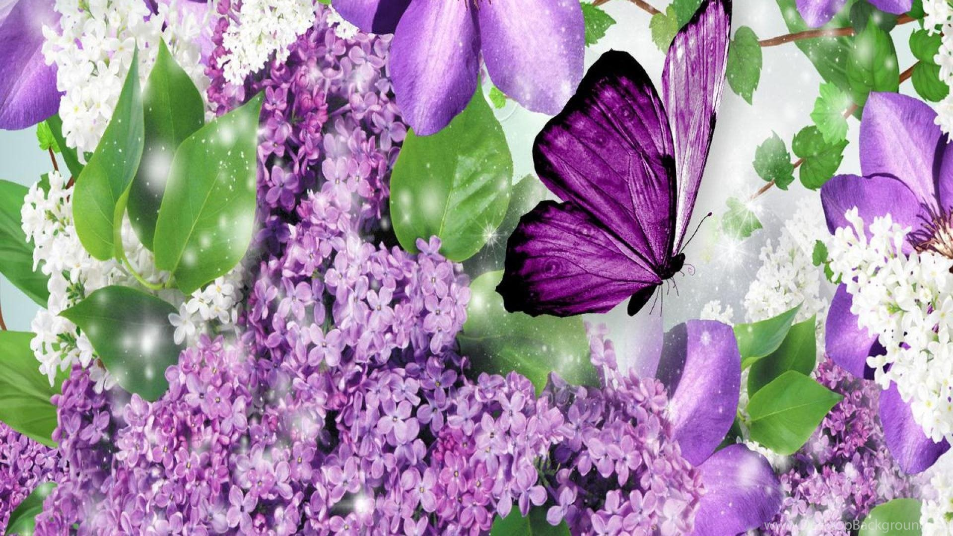 Best Wallpaper High Quality Butterfly - 820417_download-free-250-high-quality-butterfly-wallpapers-the-quotes-land_1920x1080_h  Snapshot_521171.jpg