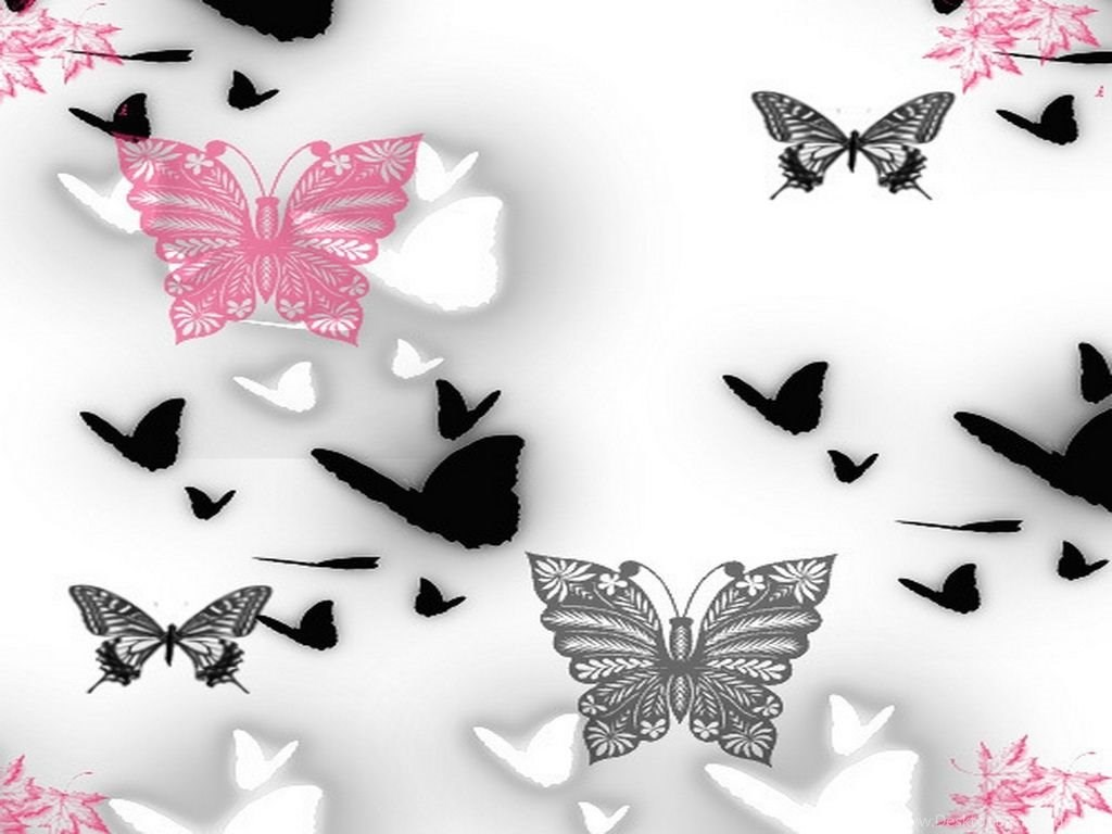 Black Butterfly Wallpapers Wallpapers Cave Desktop Background