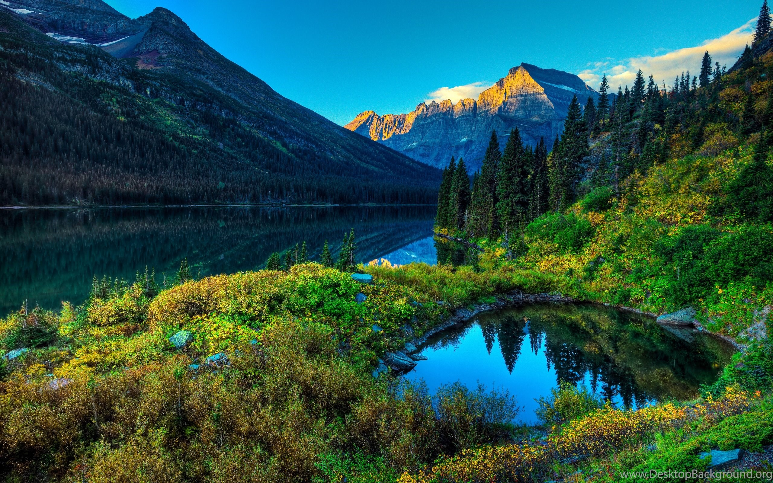 Spring Landscape High Definition Wallpapers Nature Wallpapers