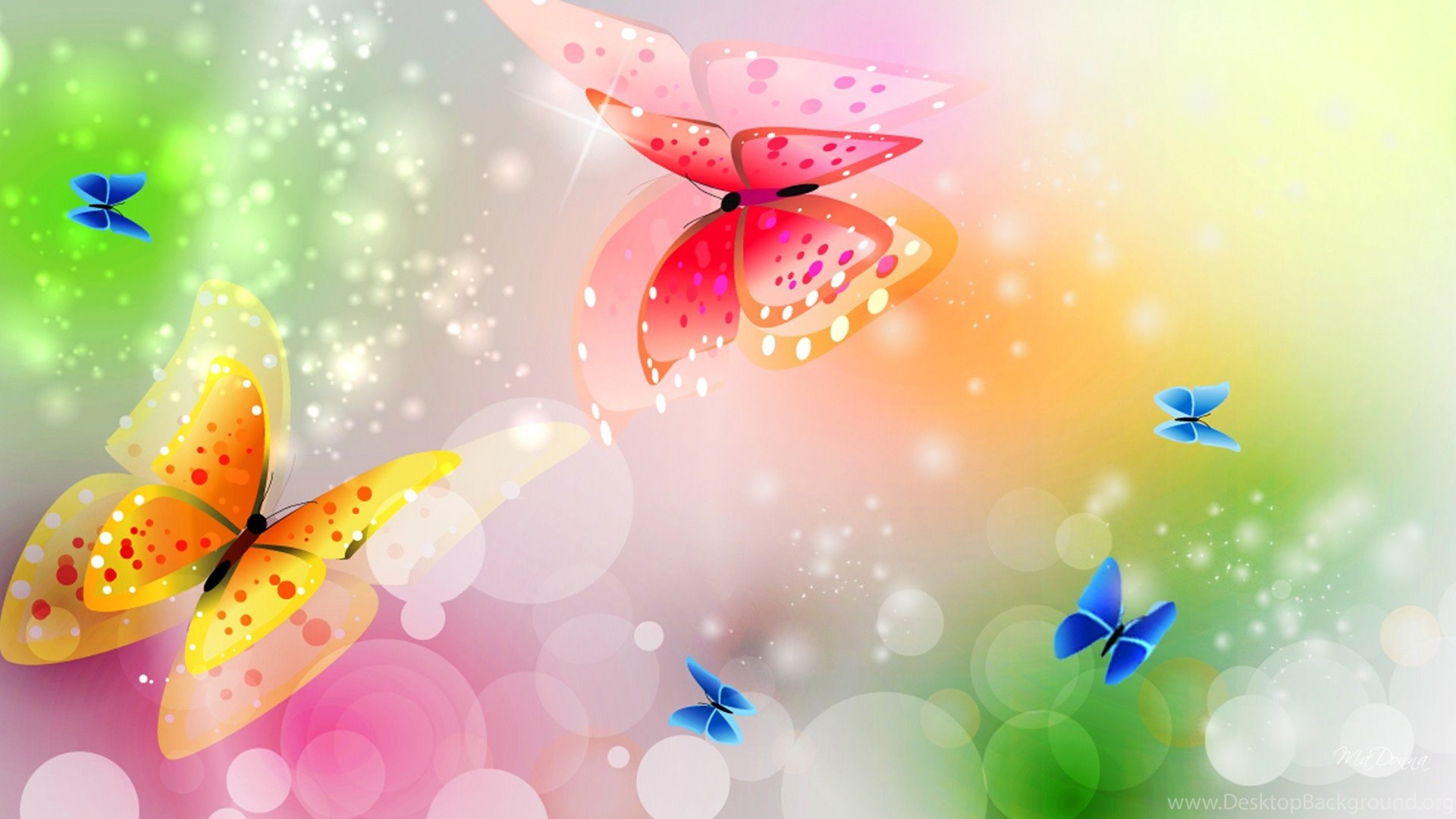 Hd Animated Colorful Butterfly Wallpapers 1080p Hirewallpapers 6821 Desktop Background