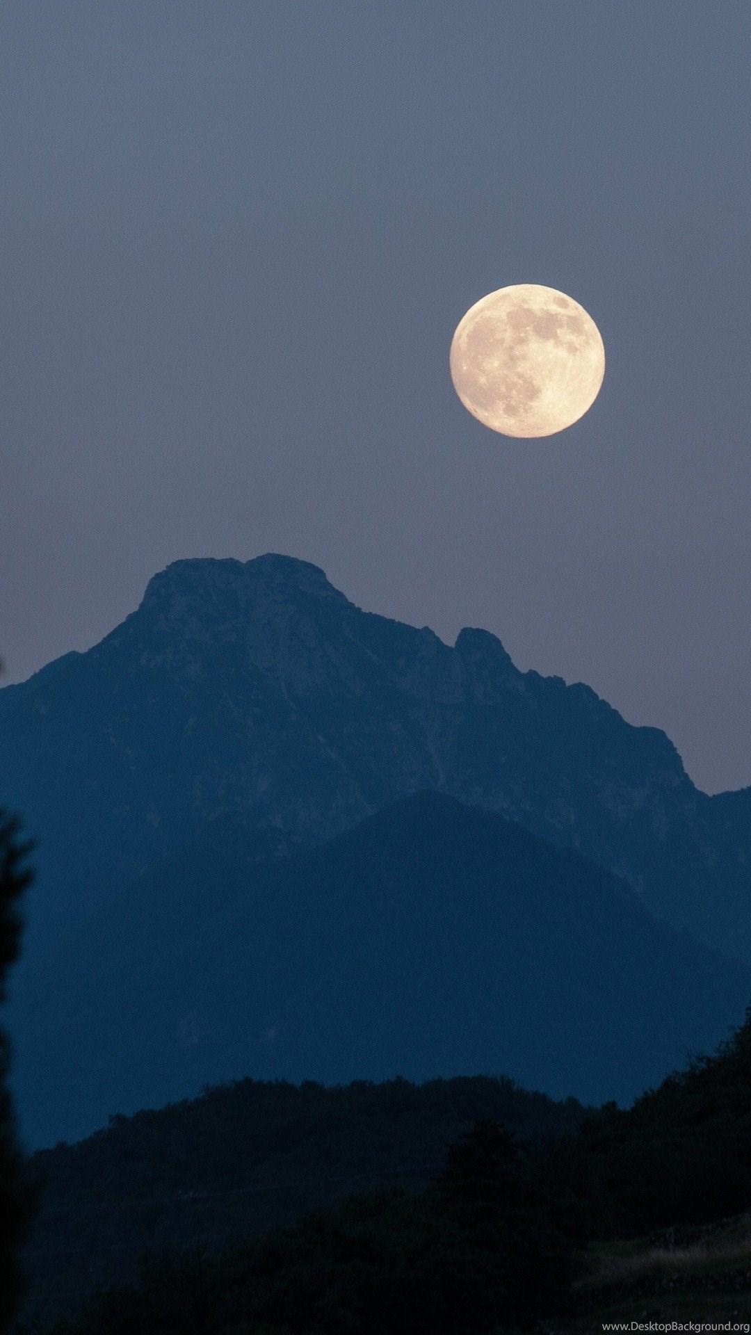 Full Moon Cypress Mountains Dark Night 4k Cool Hd Wallpapers Desktop Background