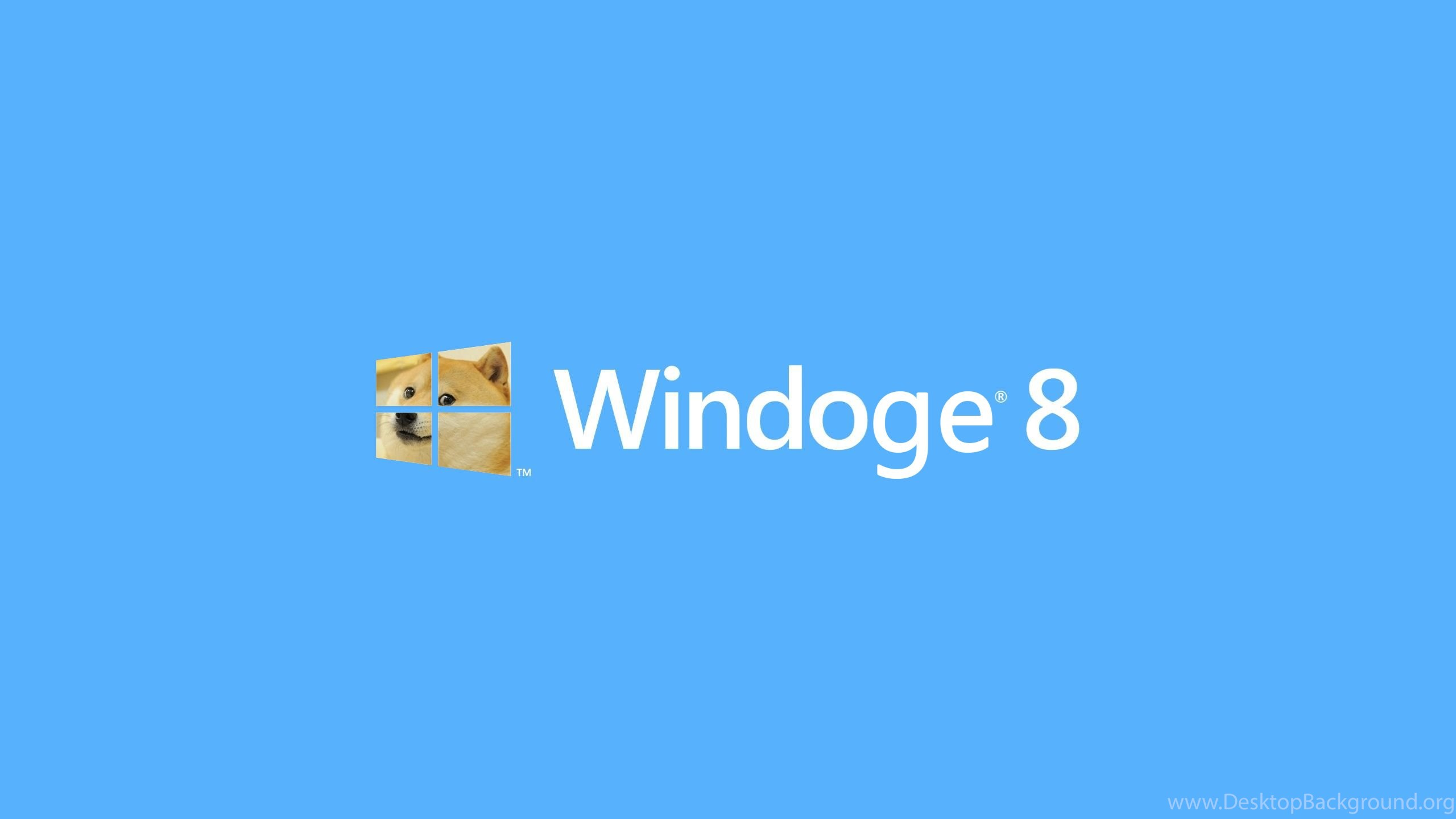 cute doge simple windows 8 wallpapers hd 9 desktop background