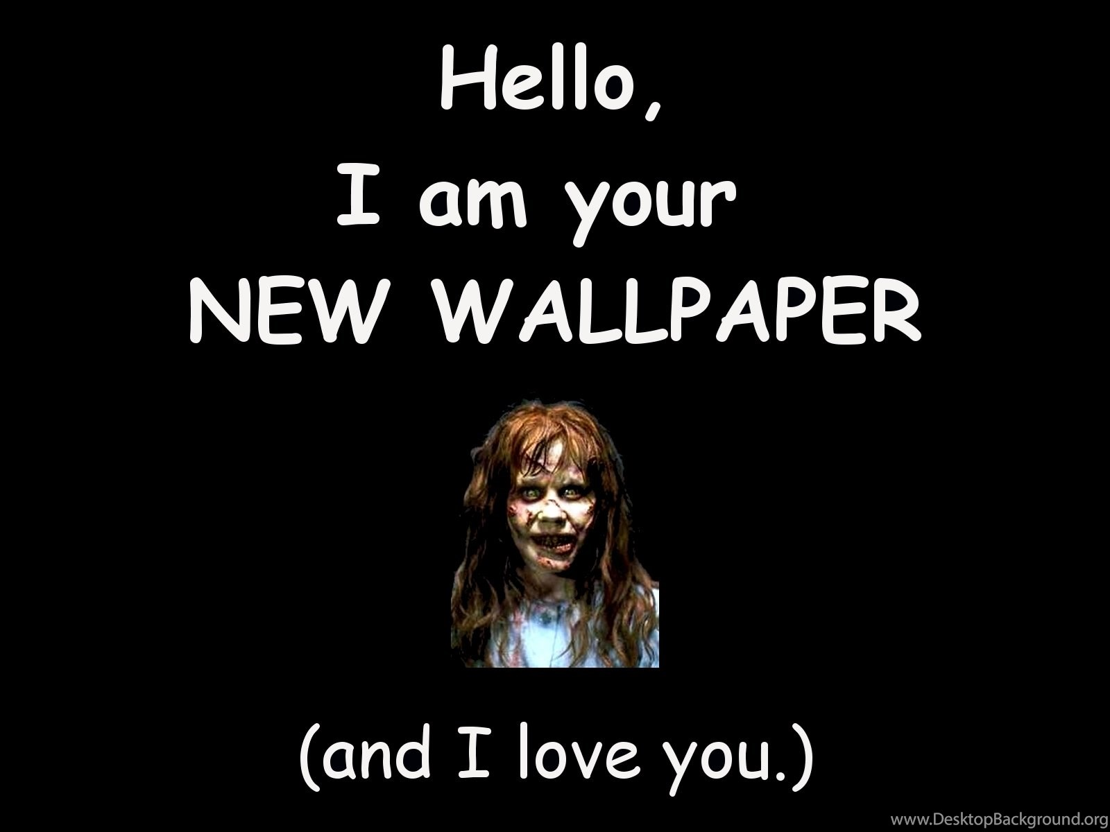 Humour Hd Wallpaper Hd Wallpaper Funny Hd Wallpapers Desktop Background