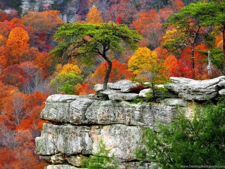 Autumn Mountains Backgrounds Inside Fall Mountains Desktop Backgrounds Hd Widescreen 11 Hd Wallpapers Background