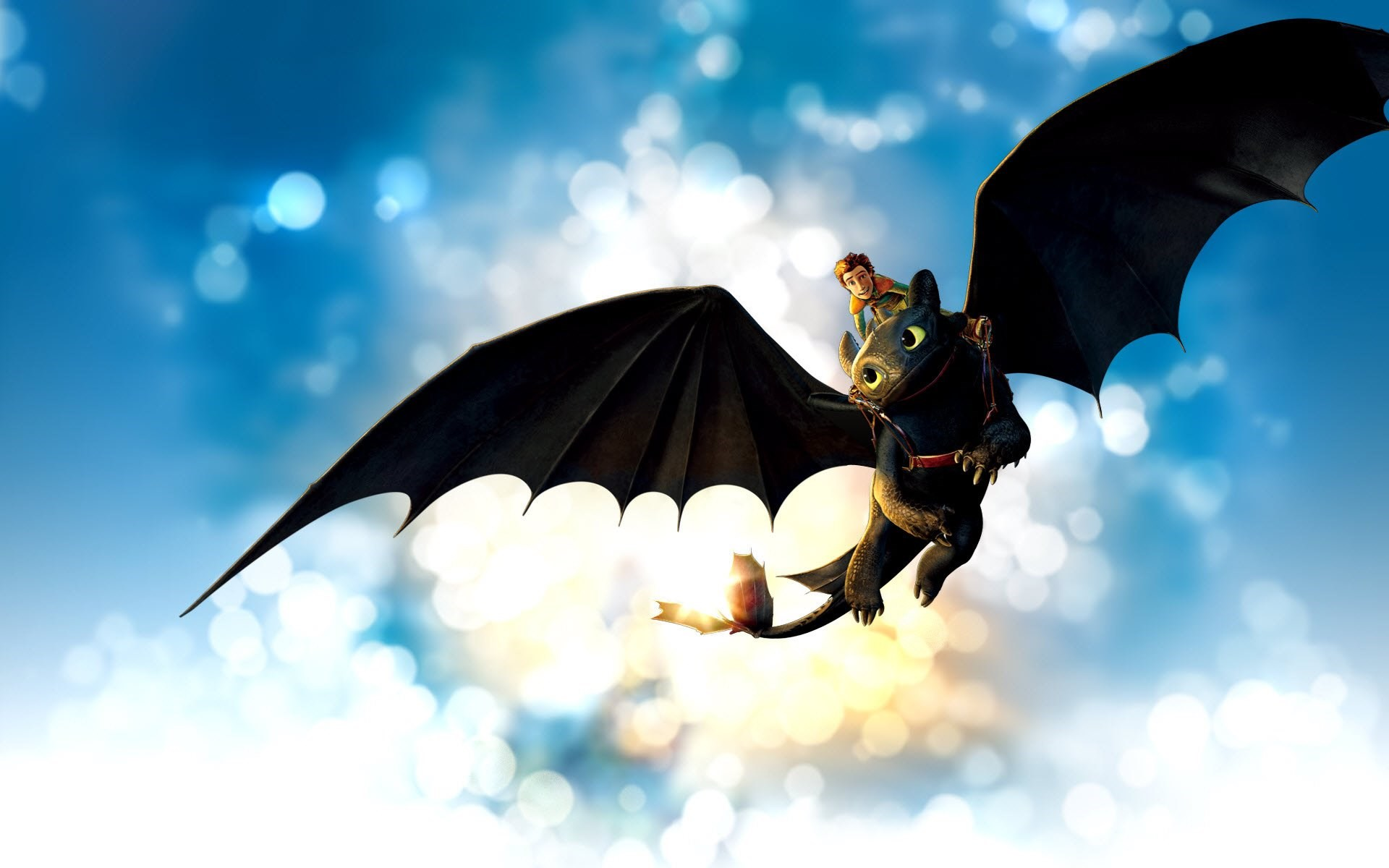 How To Train Your Dragon Free Wallpapers 45 Photos For Your