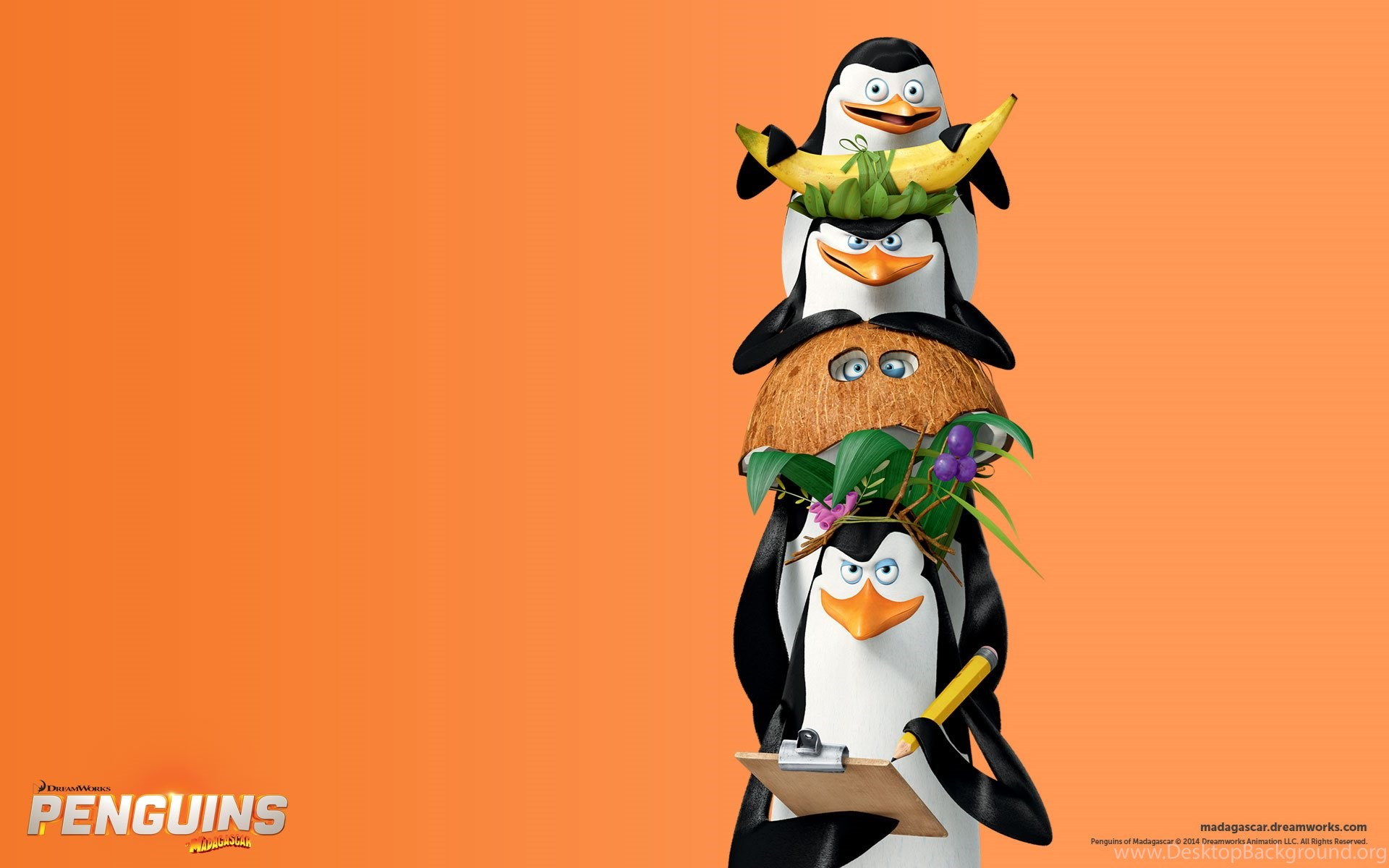 Most Inspiring Wallpaper Movie Penguins Madagascar - 881952_penguins-of-madagascar-hd-wallpapers-and-backgrounds_1920x1200_h  Graphic_591329.jpg