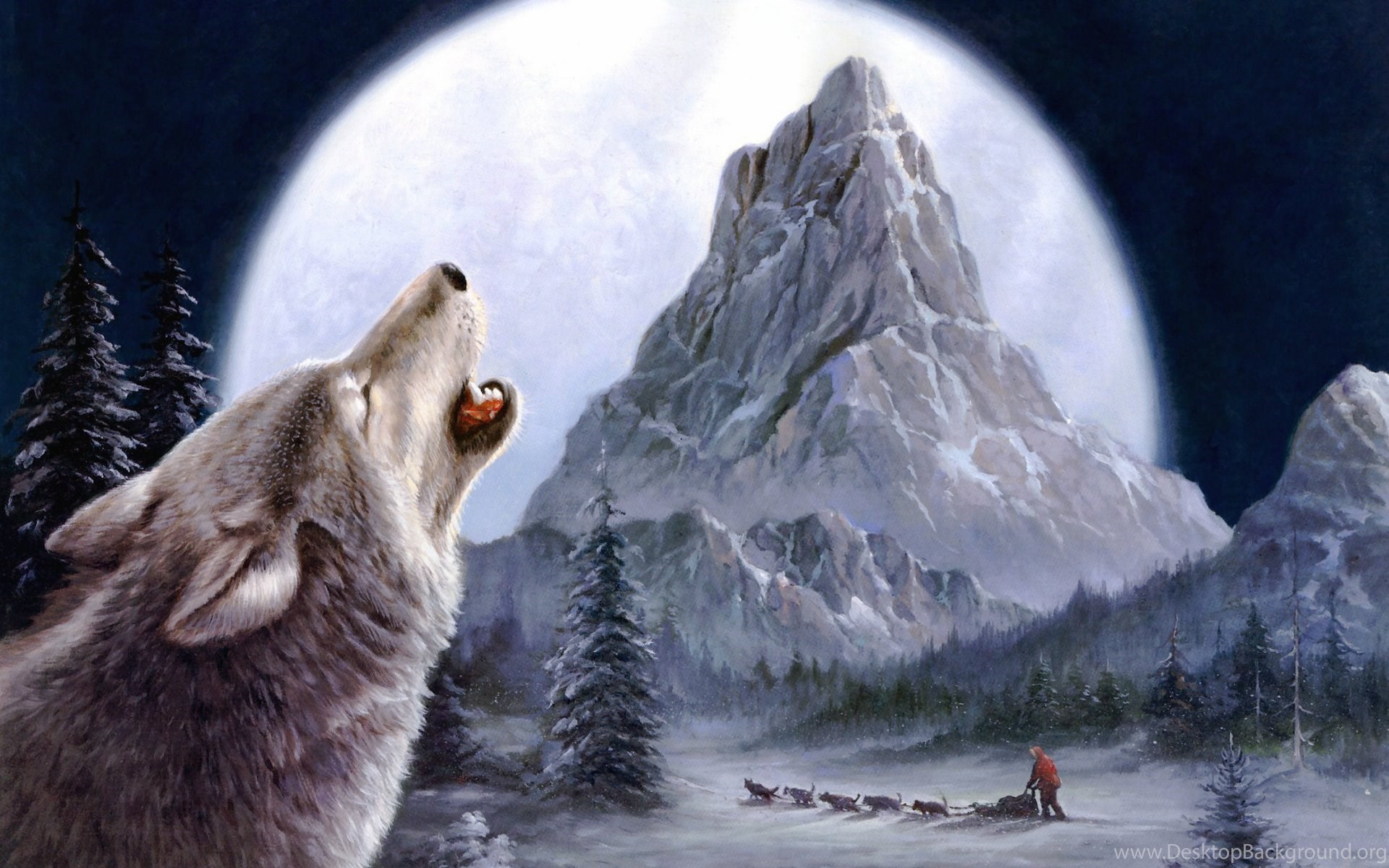 wolves wallpapers impremedianet