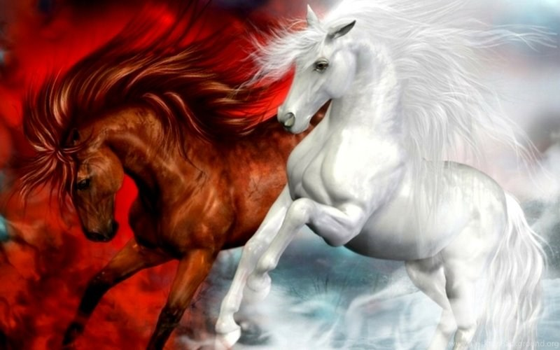 Brown And White 3d Horse Wallpapers For Pc Wallpaper Size