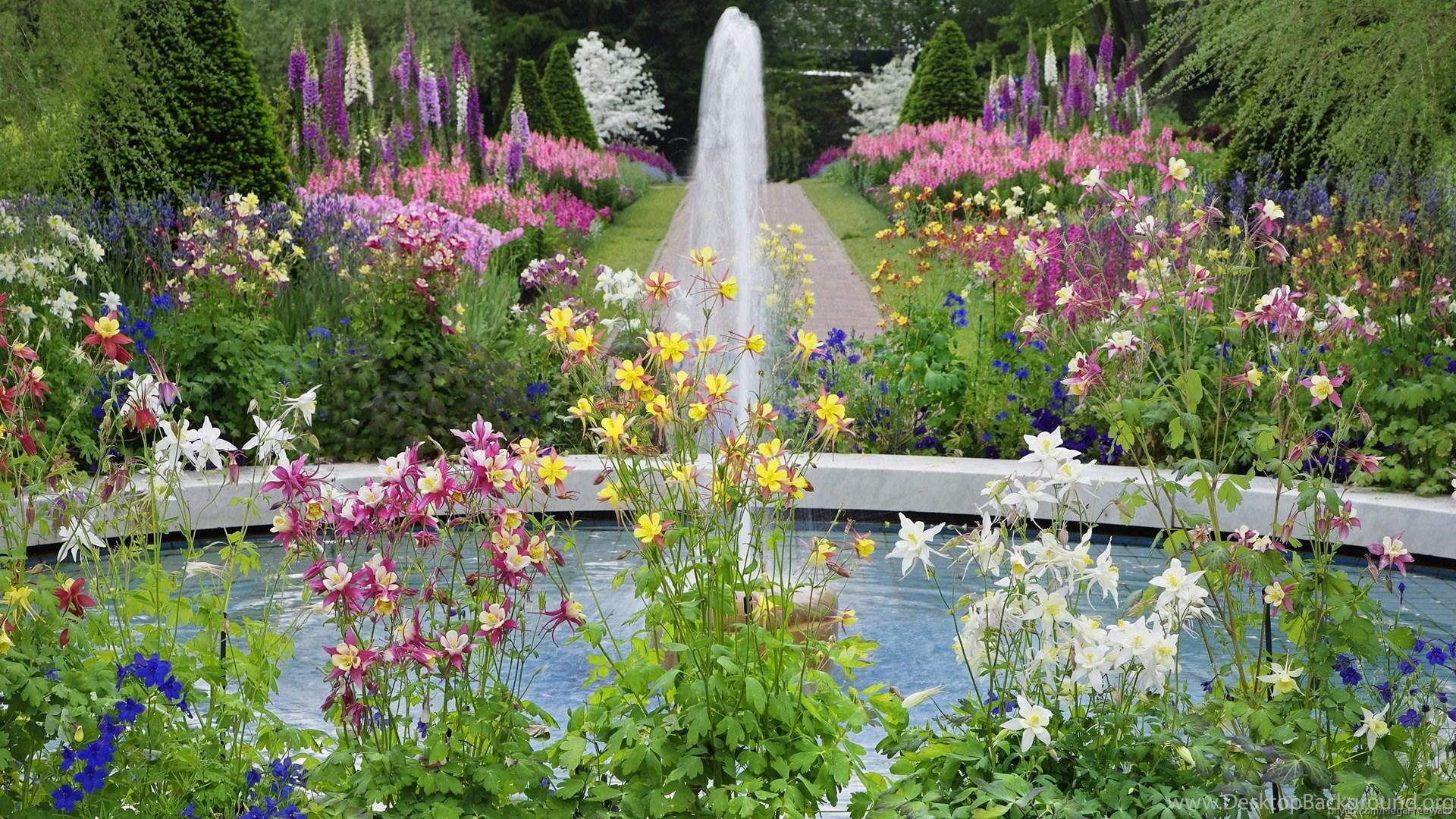 Flower Garden Fountain Hd Desktop Backgrounds Hd Widescreen
