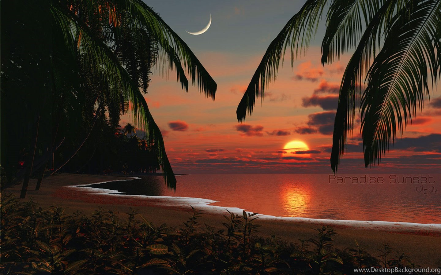Tropical Island Sunset Wallpaper Desktop Background