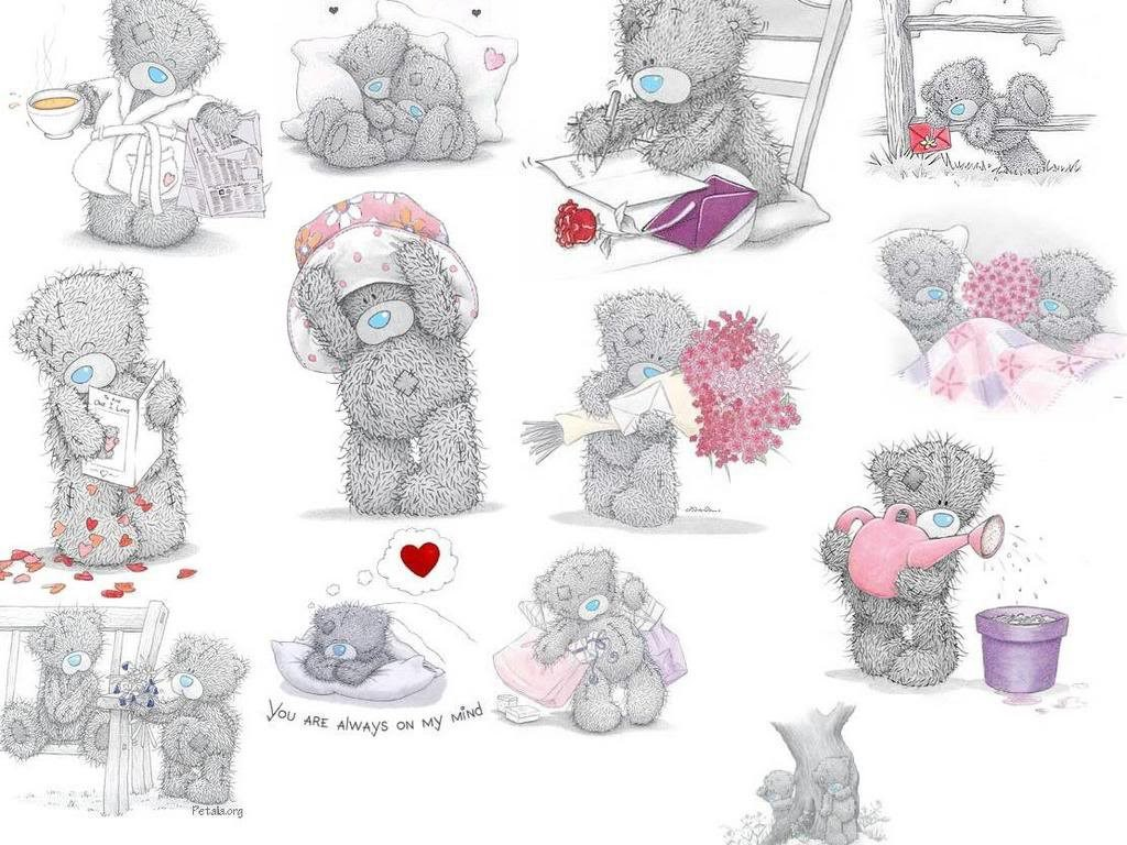 Wallpapers Tatty Teddy Flower Me To You Free Screensavers