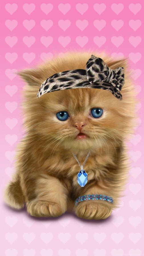 Флеш открытка с котятами, марта кате