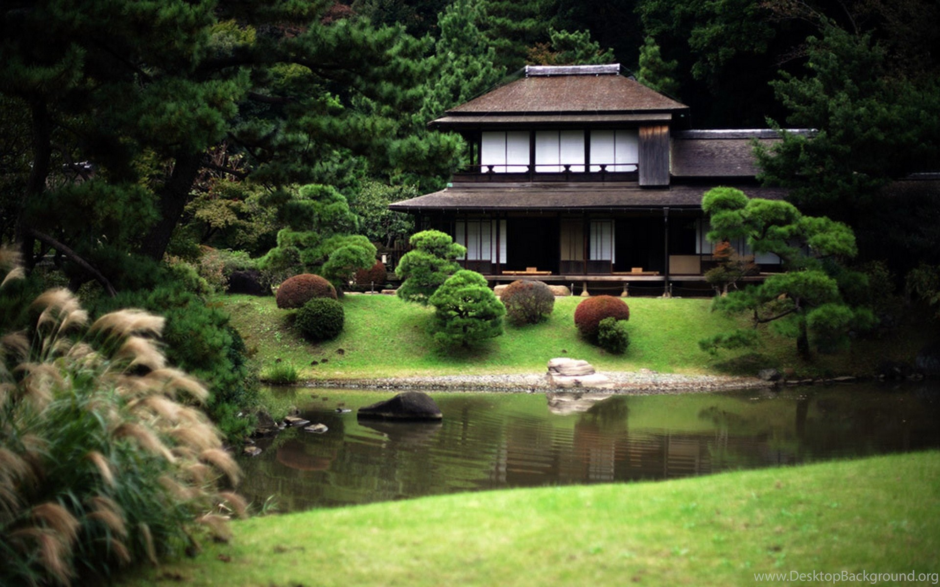 chuorinkan and kignae houses in tokoyo japan Discover 45 hidden attractions, cool sights, and unusual things to do in tokyo, japan from ghibli museum to tokyo tower wax museum's progressive rock room 45 cool, hidden, and unusual things to do in tokyo, japan.