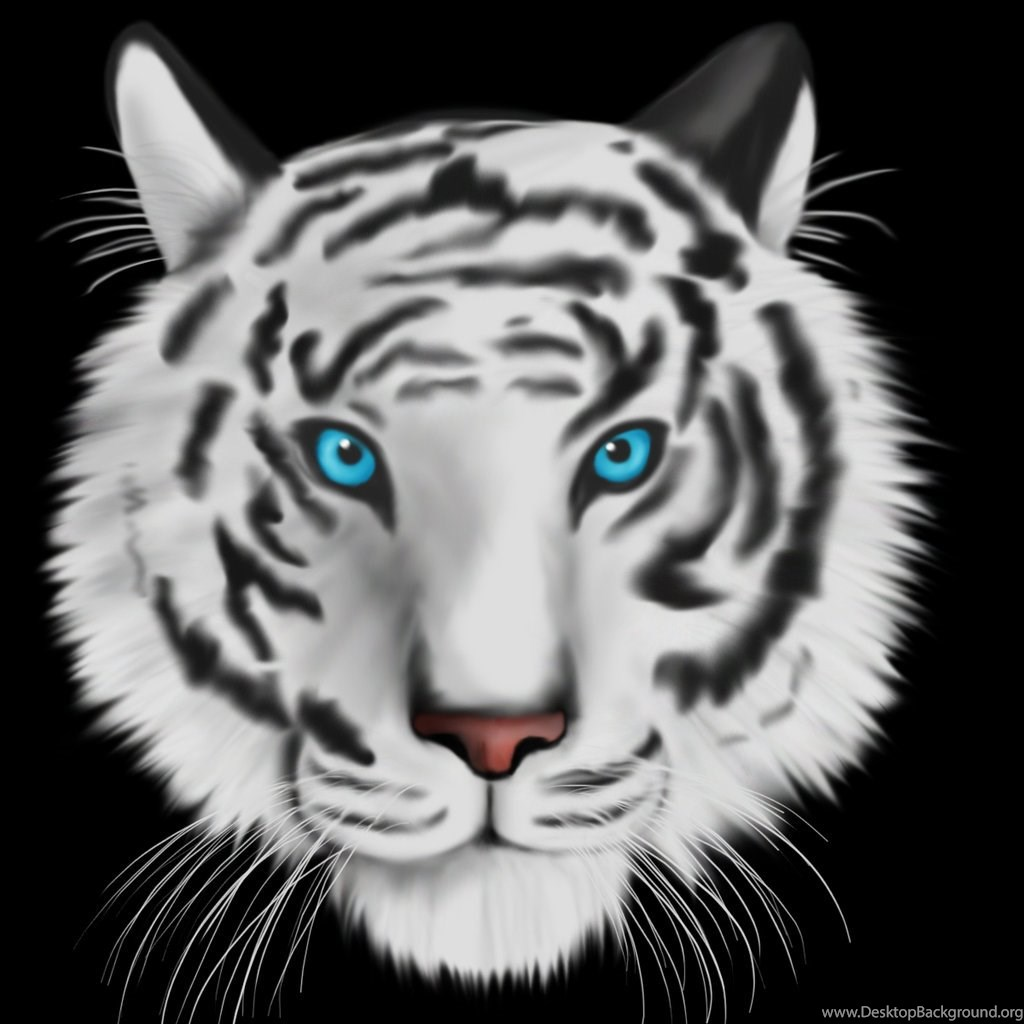 945331 white tiger with blue eyes wallpaper wallpaper white tiger