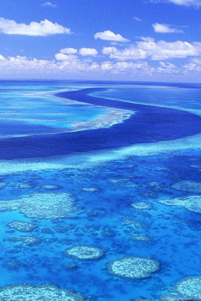 The great barrier reef australia iphone 4 4s ipod - Great barrier reef desktop background ...