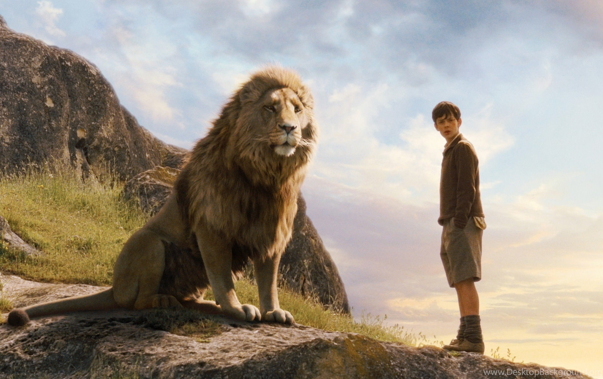 Pictures Of Narnia The Lion The Witch And The Wardrobe Wallpapers