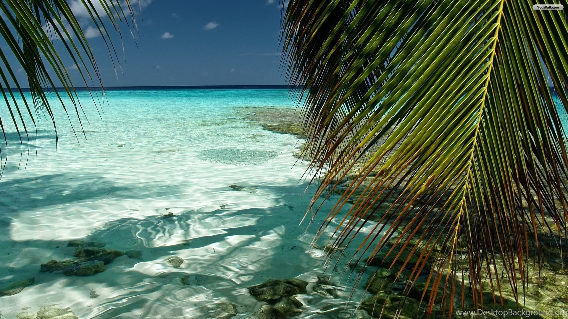 Free Tropical Desktop Backgrounds Wallpapers Cave Background