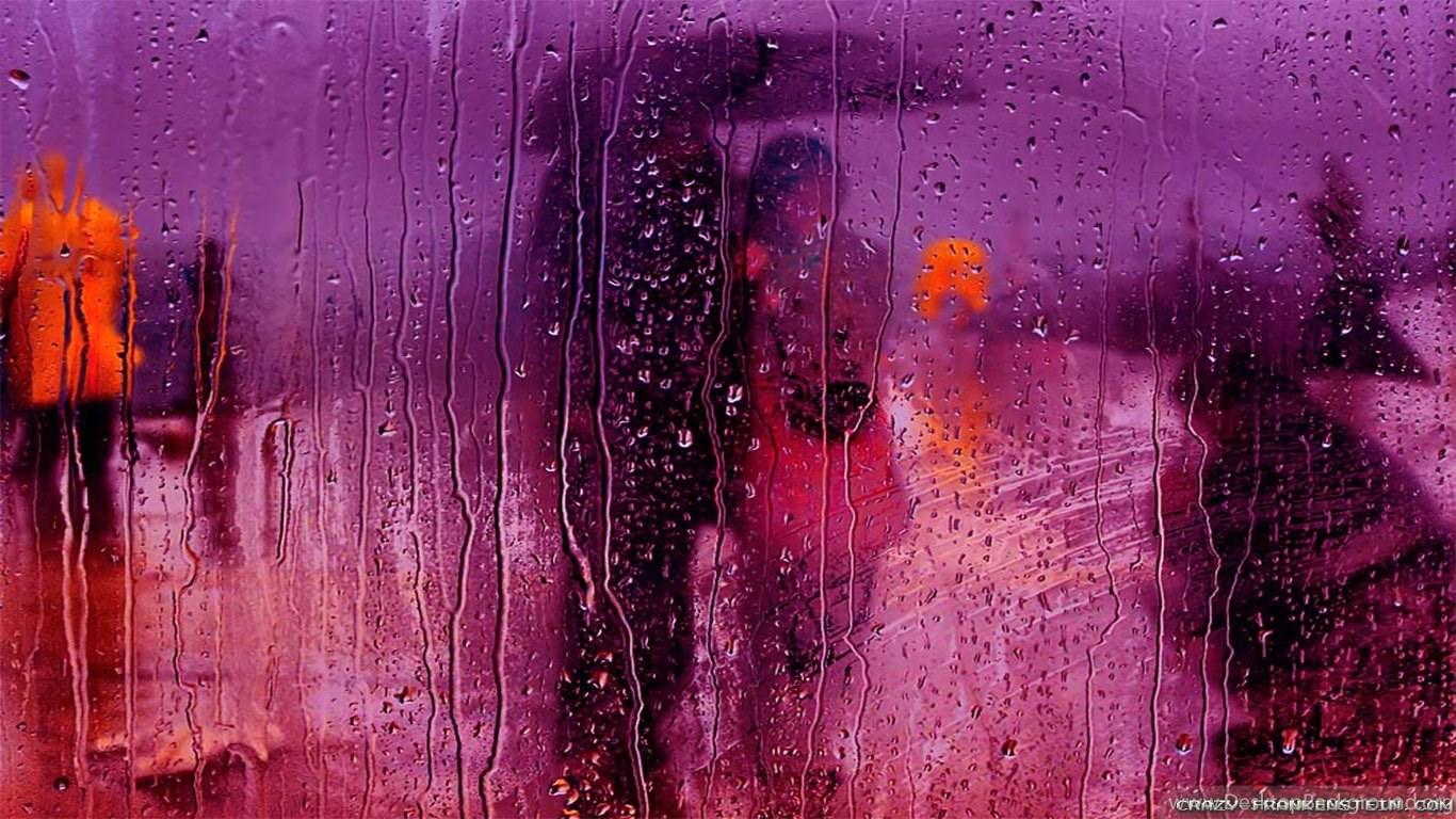 Simple Wallpaper Love Rain - 968030_love-rain-wallpapers-crazy-frankenstein_1366x768_h  Gallery_511006.jpg