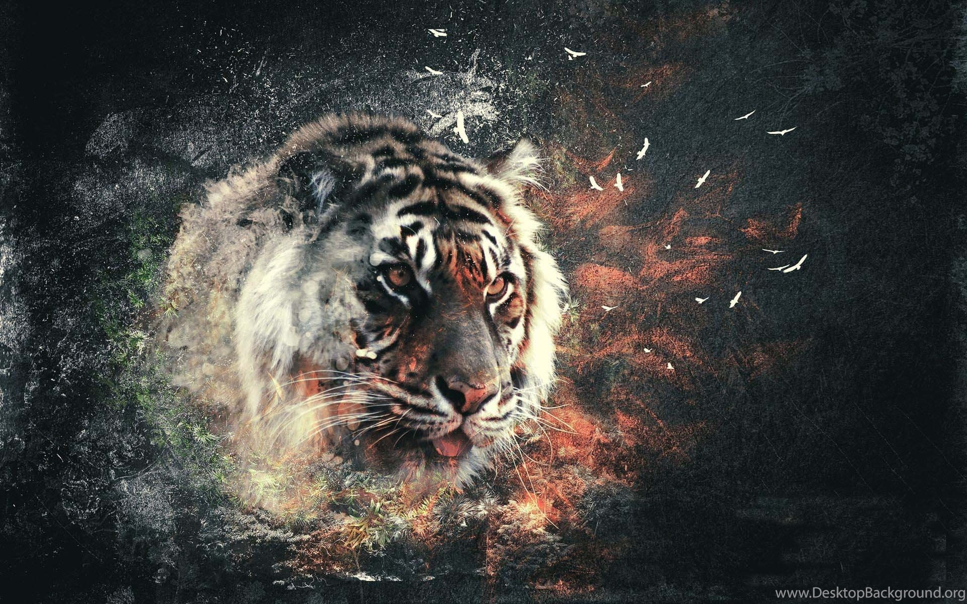 3D Tiger Wallpapers Wallpapers HD Wide Desktop Background