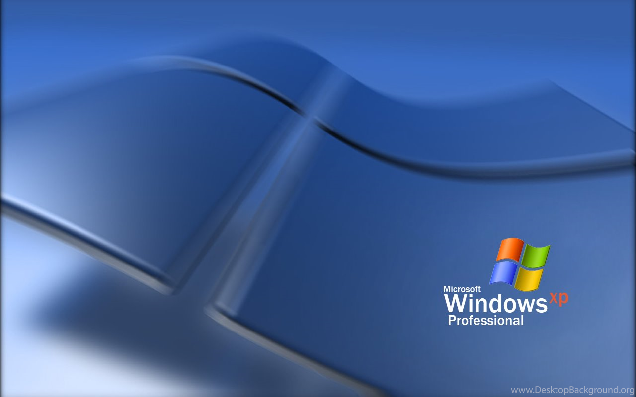 Related Searches For Windows Xp Professional Wallpapers Dog