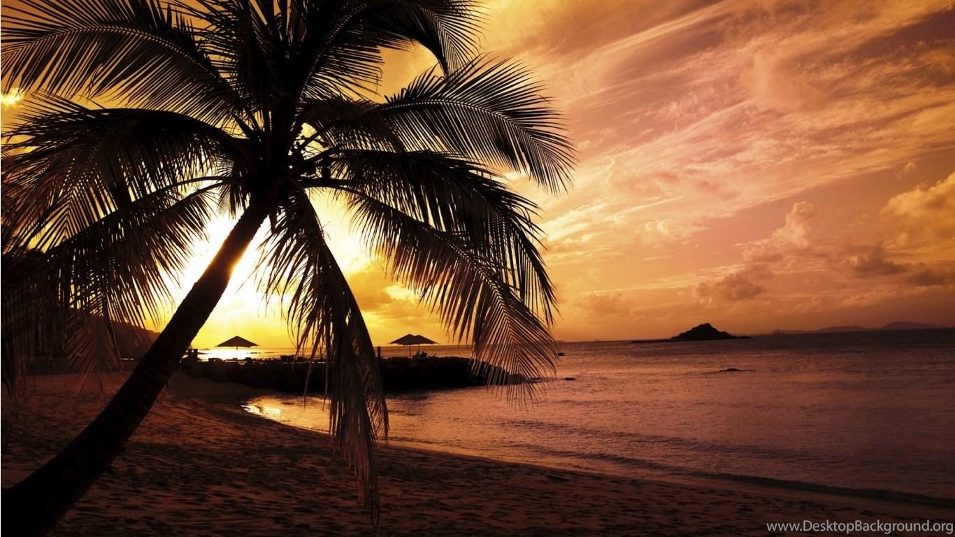 Wallpapers Inc Cute Cartoon Hd Sunset Beach Size My Hub World Best Desktop Background