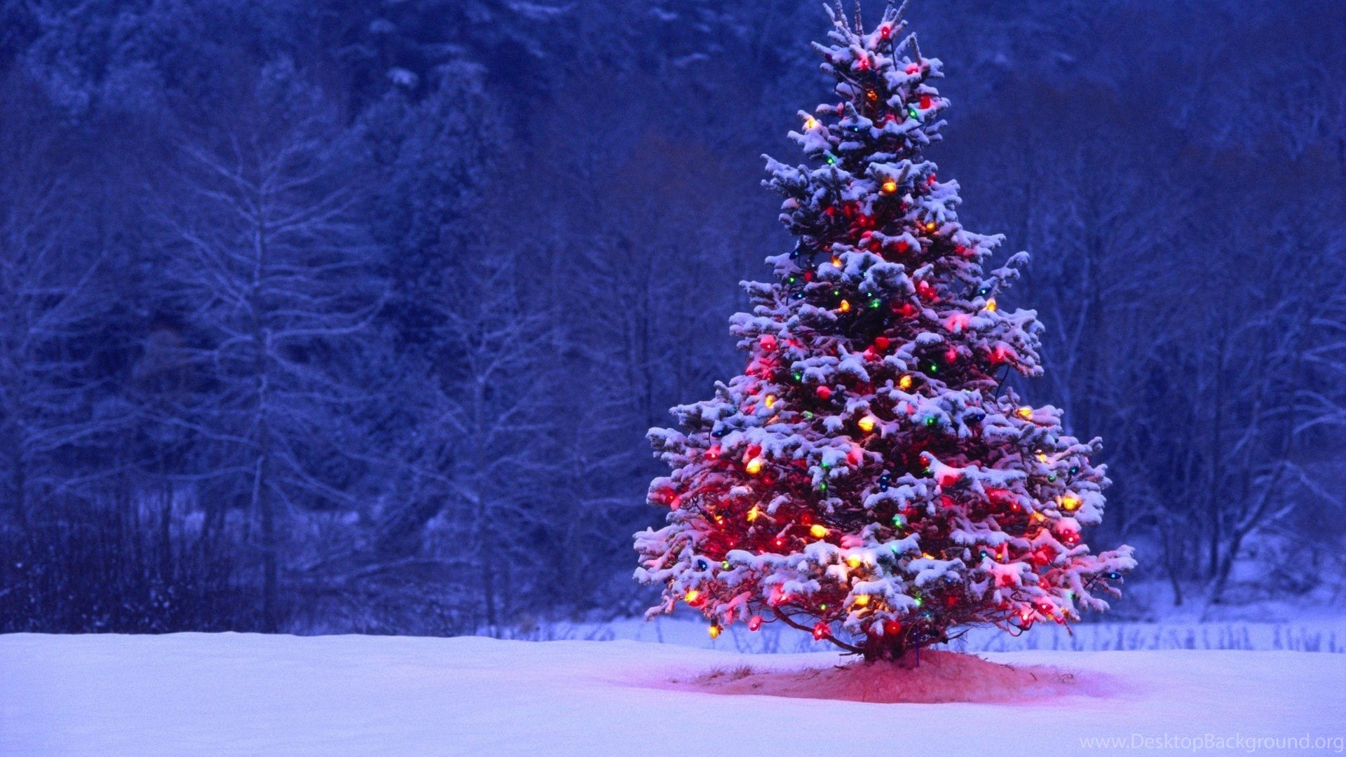 Pretty Christmas Candle Wallpapers Desktop Background
