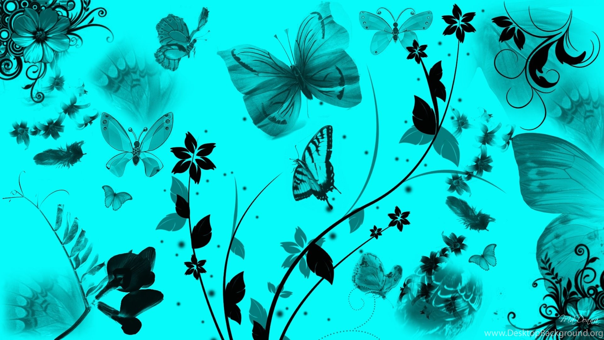 Teal Butterfly Wallpapers All Wallpapers New Desktop ...