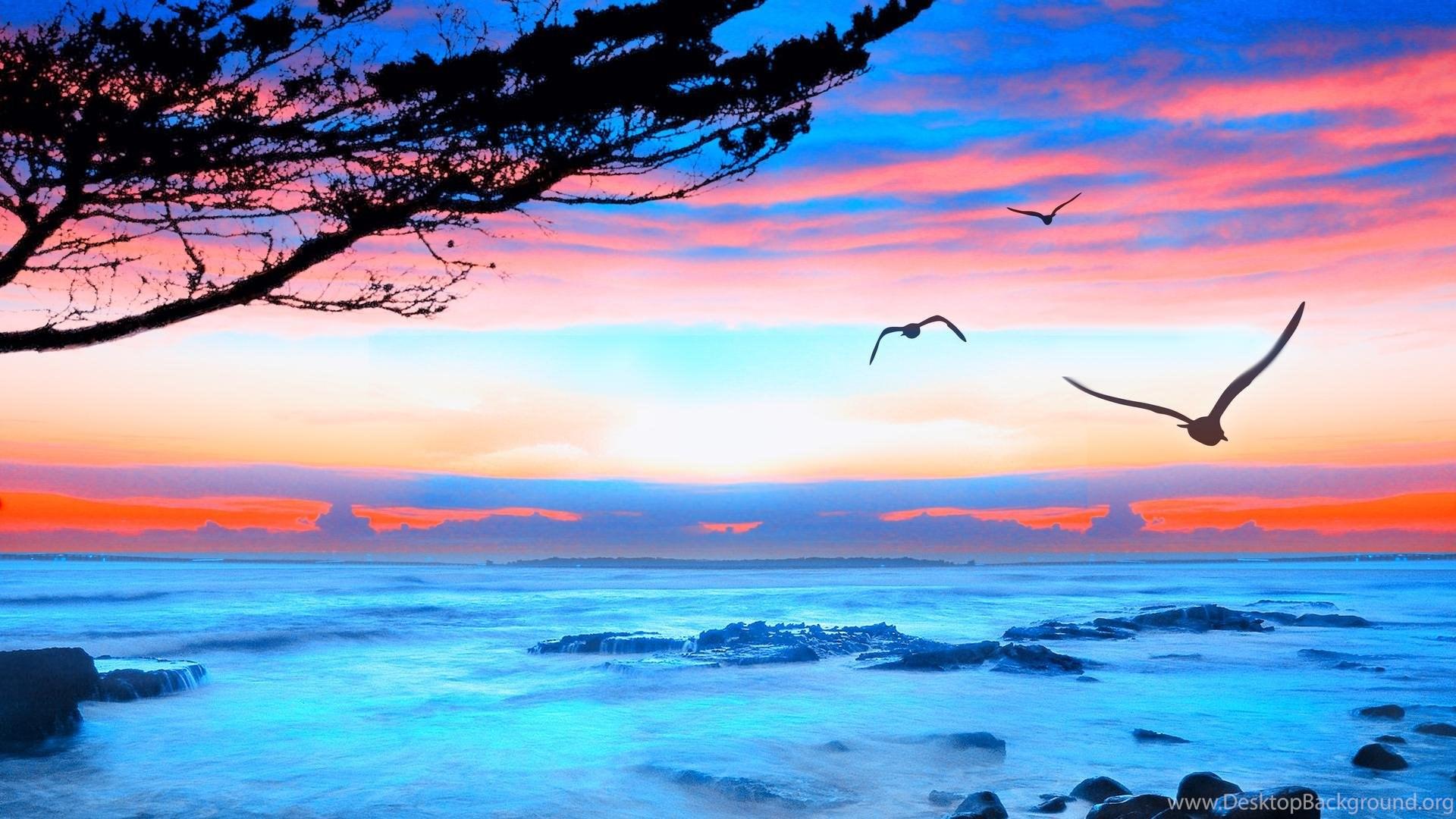 Hd Wallpapers 1080p Widescreen Ocean The Galleries Of Hd Wallpaper
