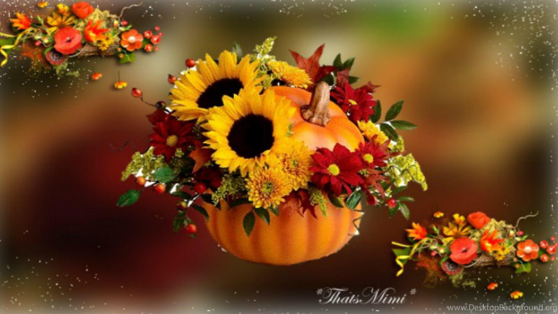 Fall flowers wallpapers celebrate autumn fall pumpkin - Pumpkin wallpaper fall ...