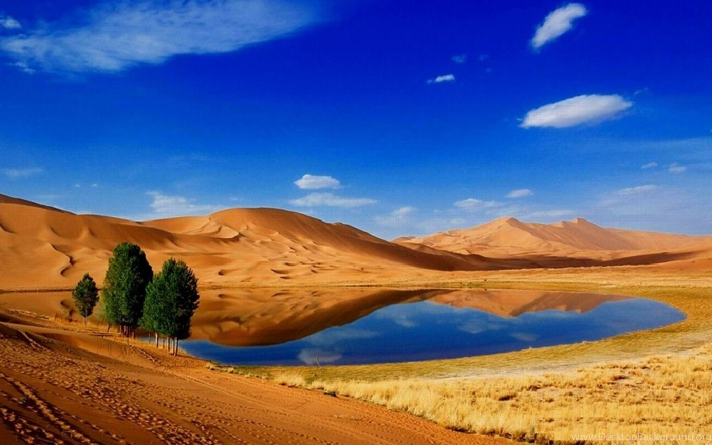 Desert HD Wallpapers Desktop Background