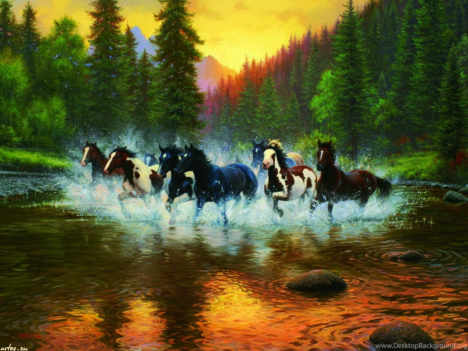 Horses Wild Sunset River Water Firs Herd Nature 5843 Wide